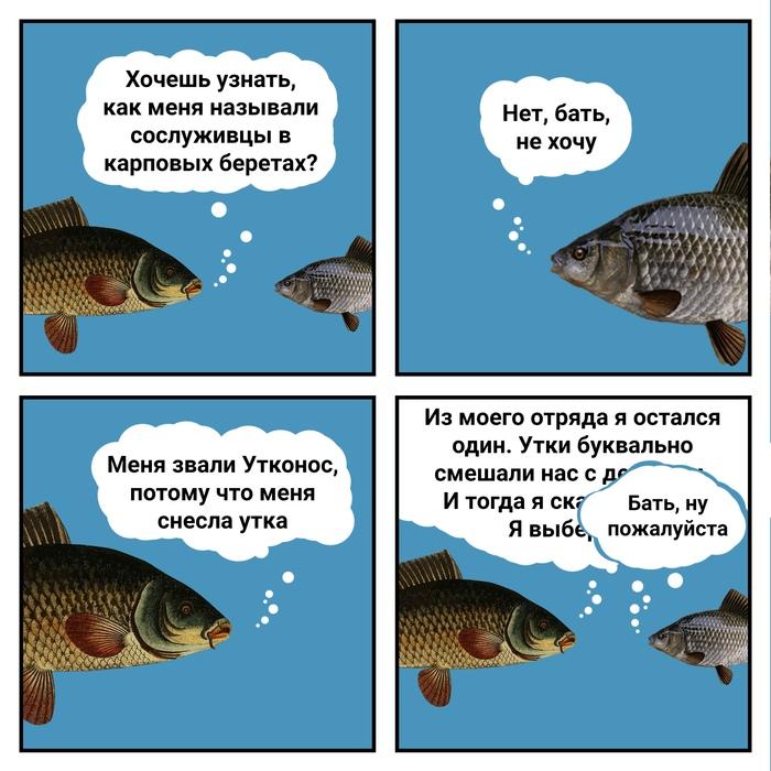 Новость 1052Одиночные икринки карповых рыб пережили путешествие по утиному кишечнику