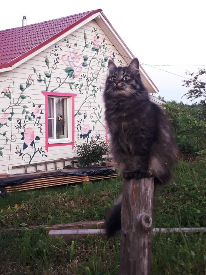 Маруся-позерша