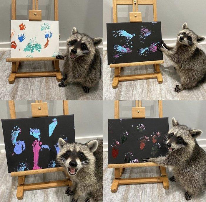 Судя по выражению мордочки, ему жутко нравятся его картины