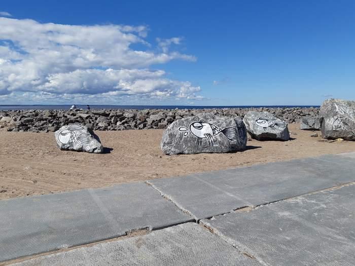 Рыбки. Финский залив (Невская губа)