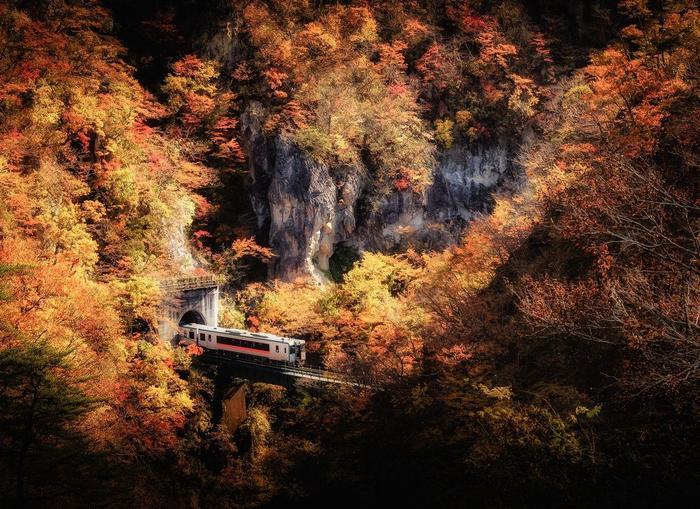 Осень в ущелье Наруко, префектура Мияги