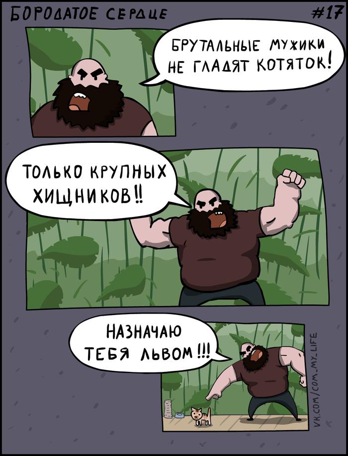 Бородатое Сердце 17