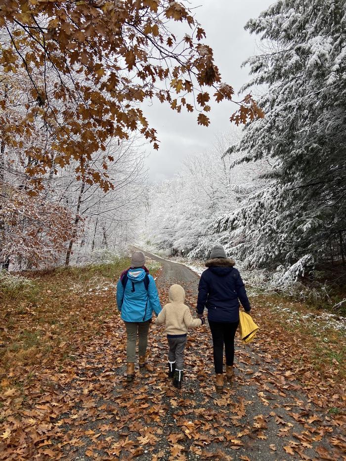 Прогулка из осени в зиму