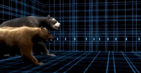 Гигантский короткомордый медведь: Титан, что мог завалить мамонта Медведи, Вымершие виды, Природа, Гифка, Длиннопост