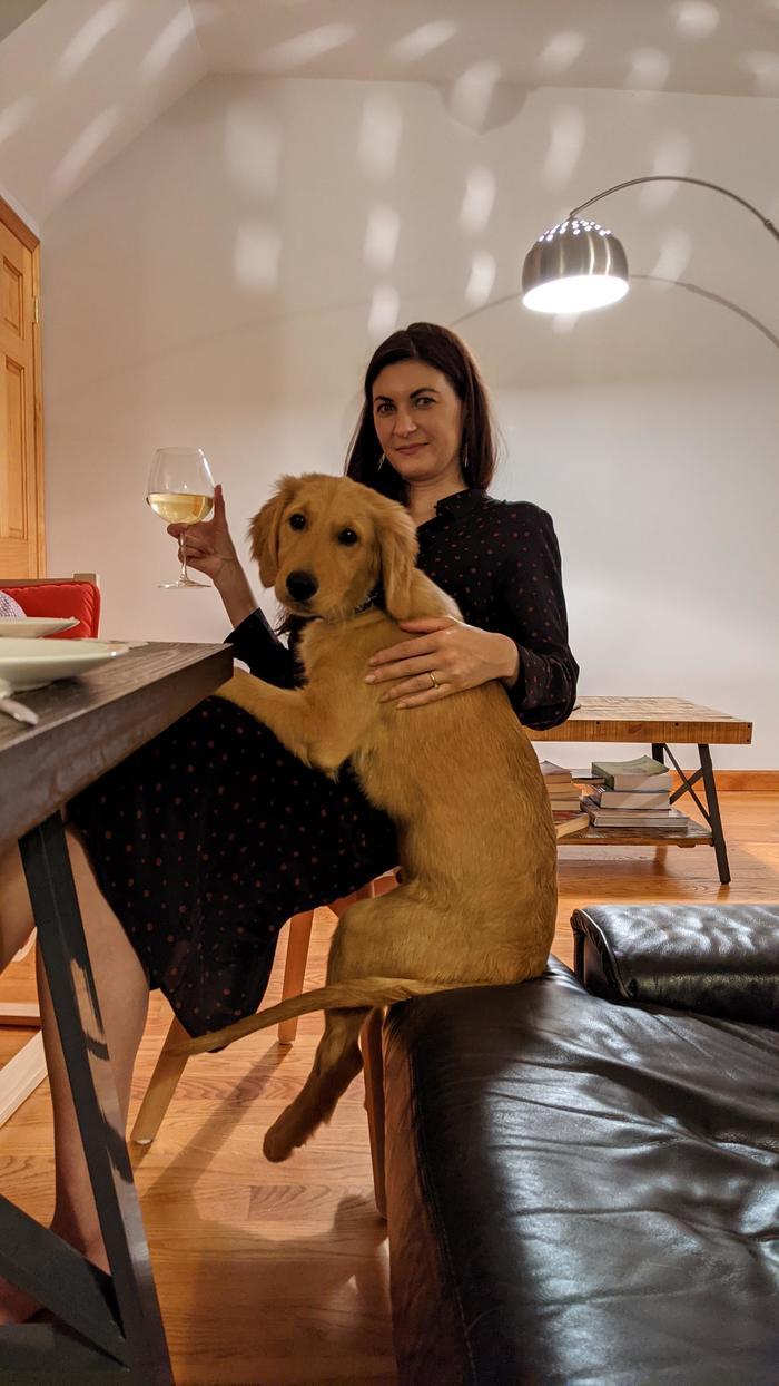 """""""Я оставила свою собаку подруге на время праздника. Вот такую фотографию она прислала мне спустя некоторое время"""""""