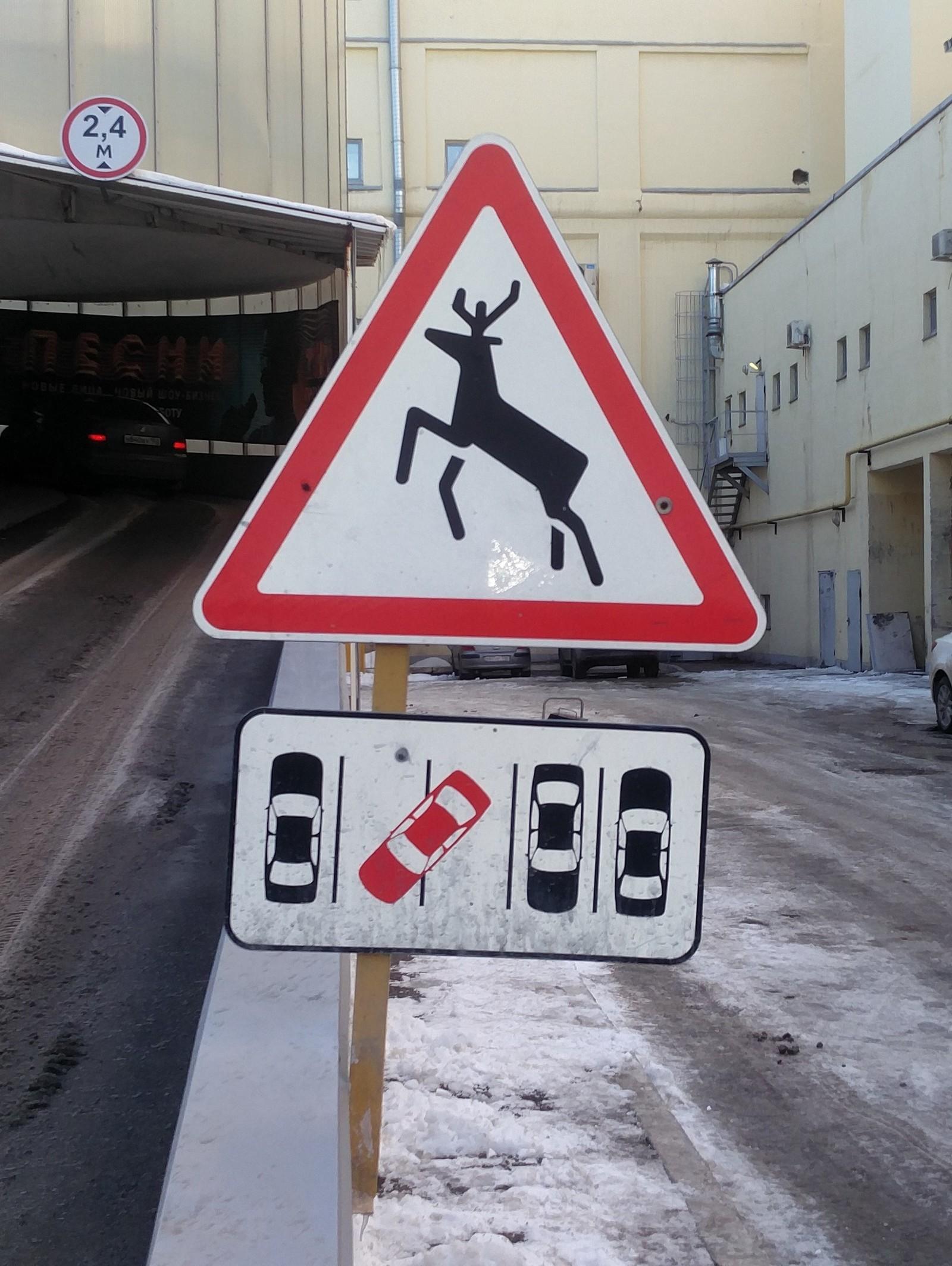осторожно дикие животные