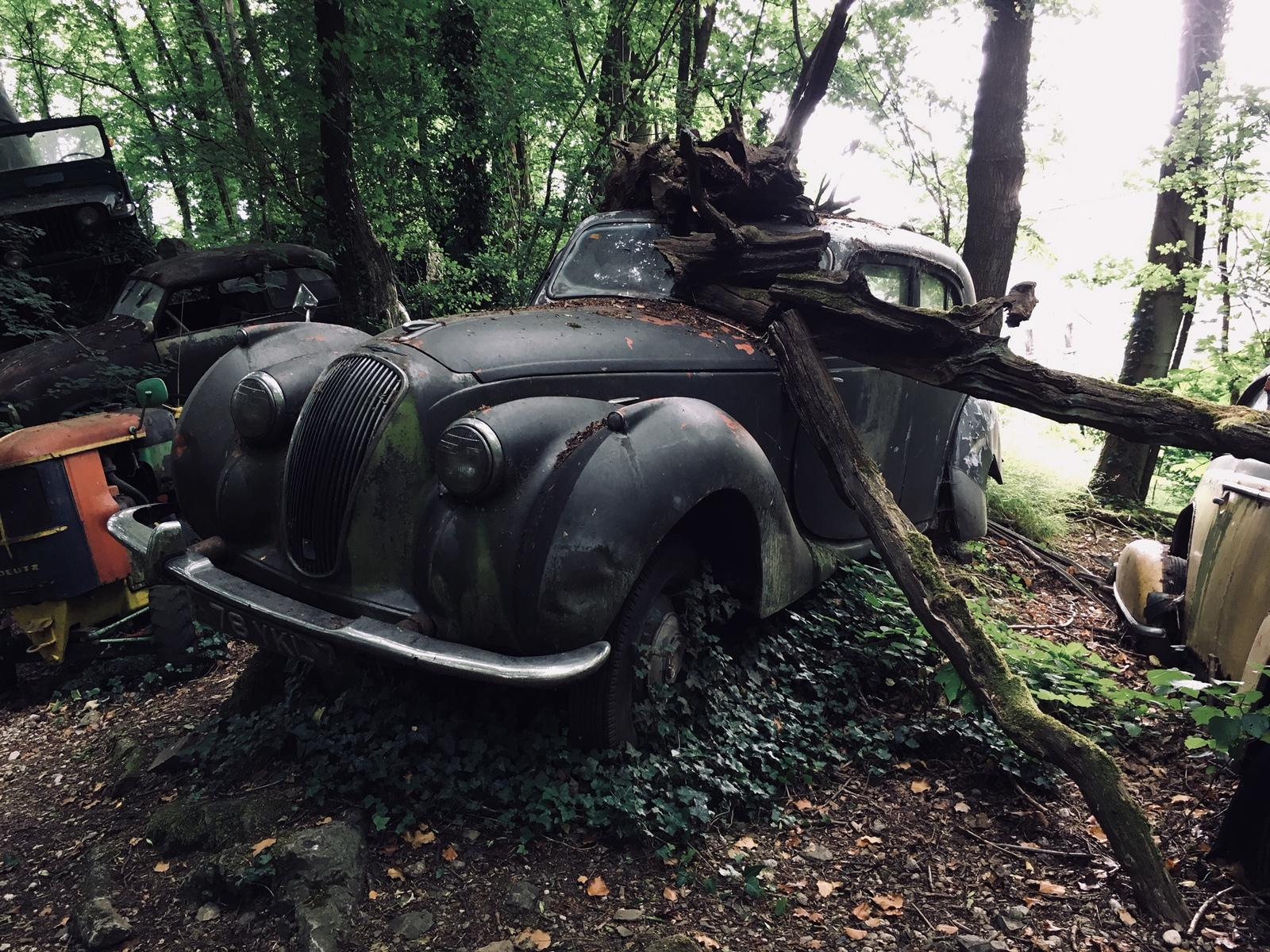 Обои автомобил, лес, брошенный, ржавчина, старый. Разное foto 12