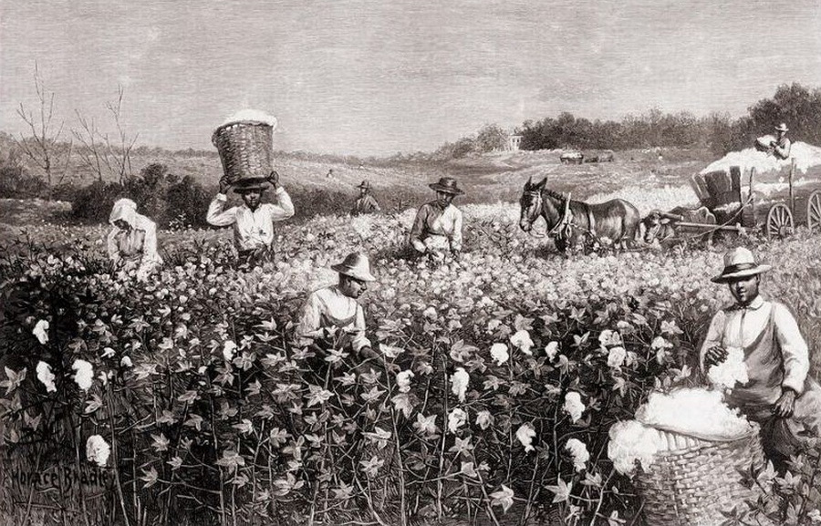 Image result for рабство в америке Ñлопок