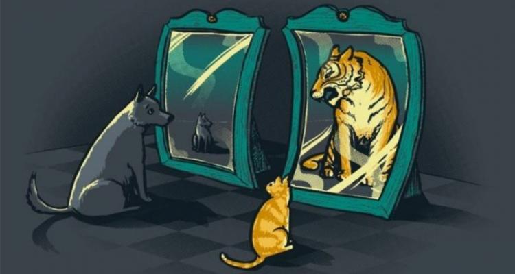 О самооценке | Пикабу