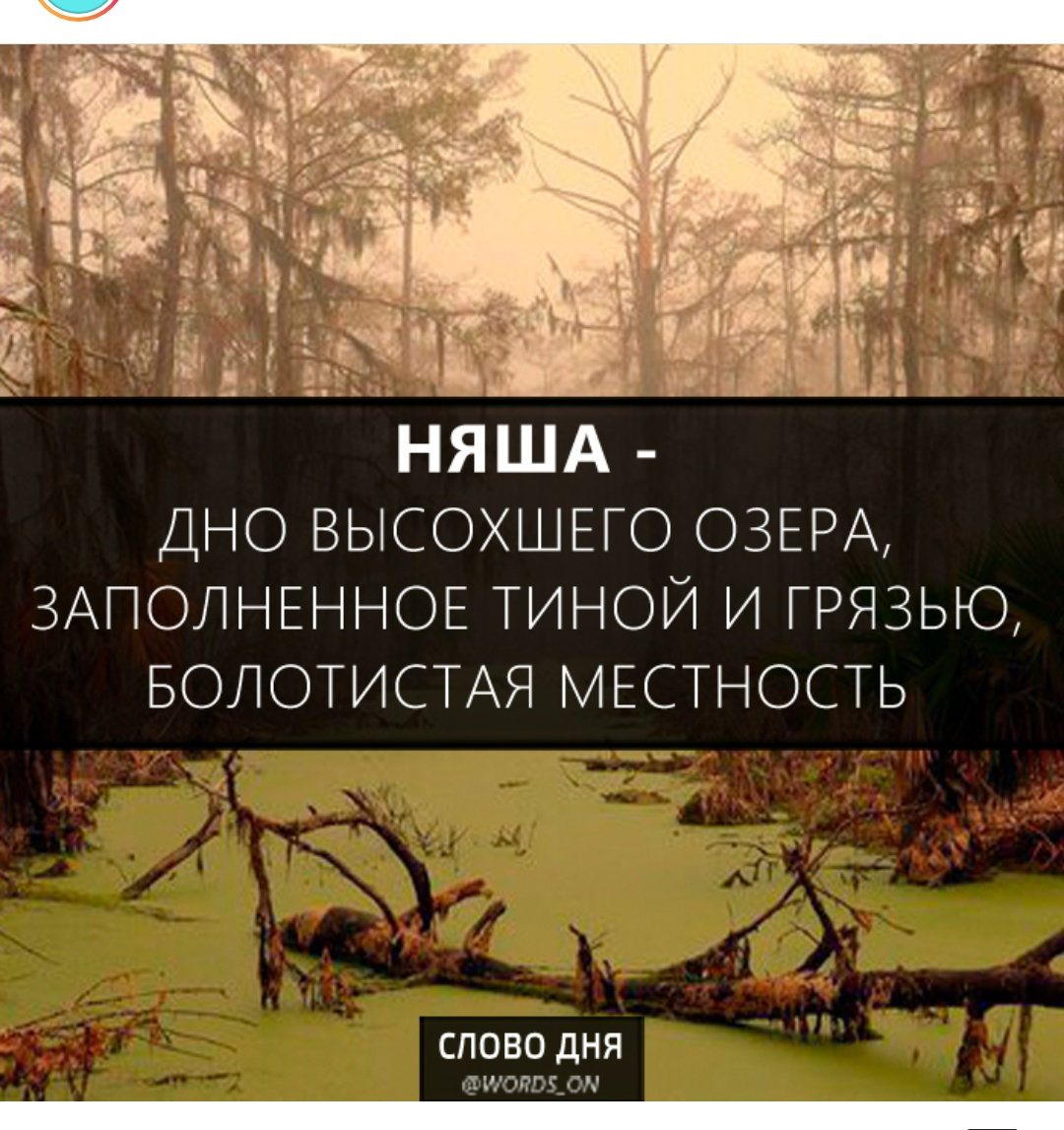 Изба Трепальня - Страница 23 1544090957181958305