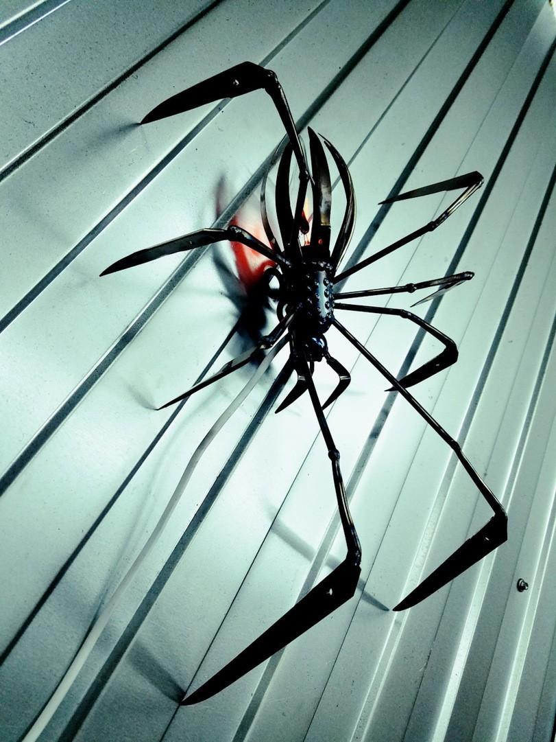 Обои Spider, паутина, мрак, паук. Разное foto 18